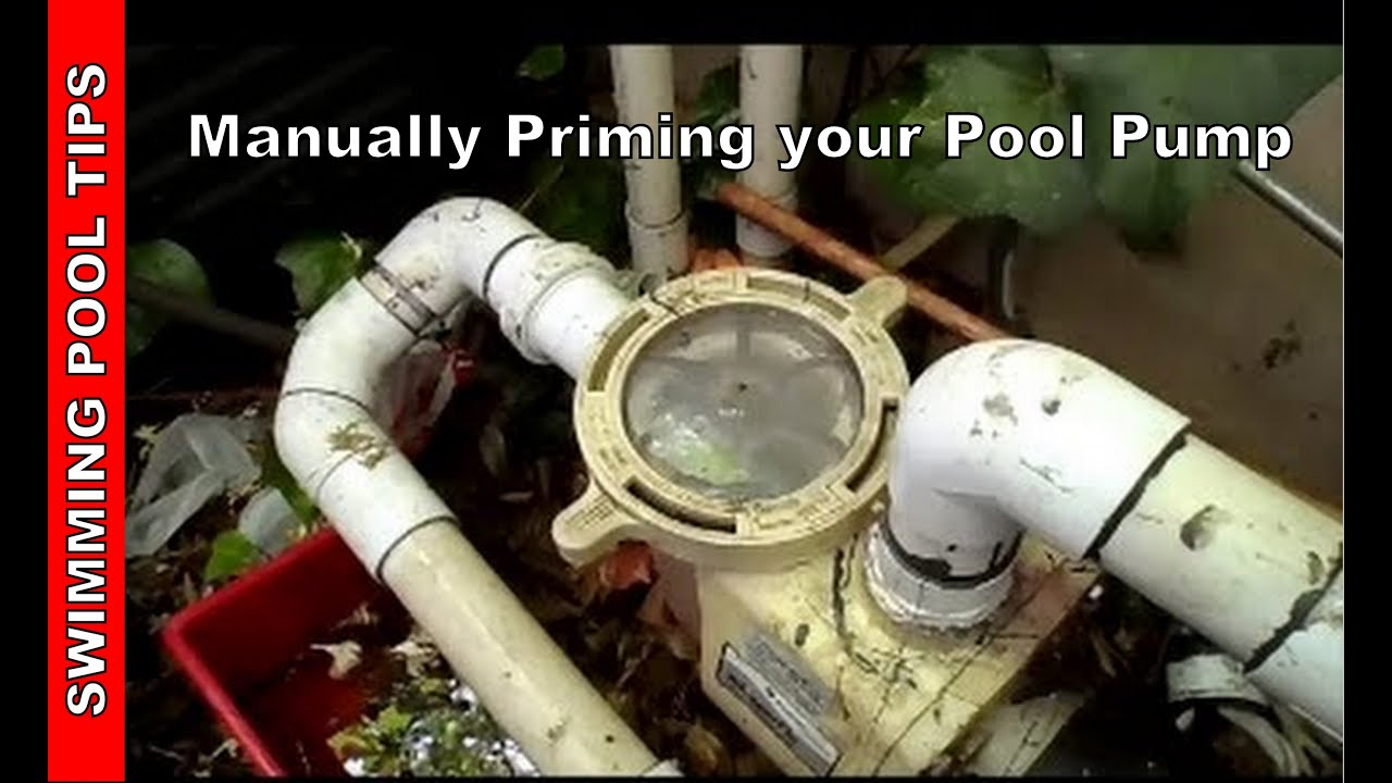 pool heater diagram tell tale heart plot pump not working part 2, manually prime your - youtube