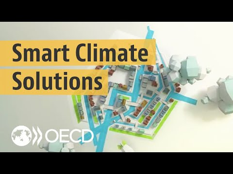 Smart climate change adaptation in practice