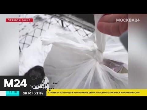 Что происходит в разных районах Москвы в период режима самоизоляции - Москва 24