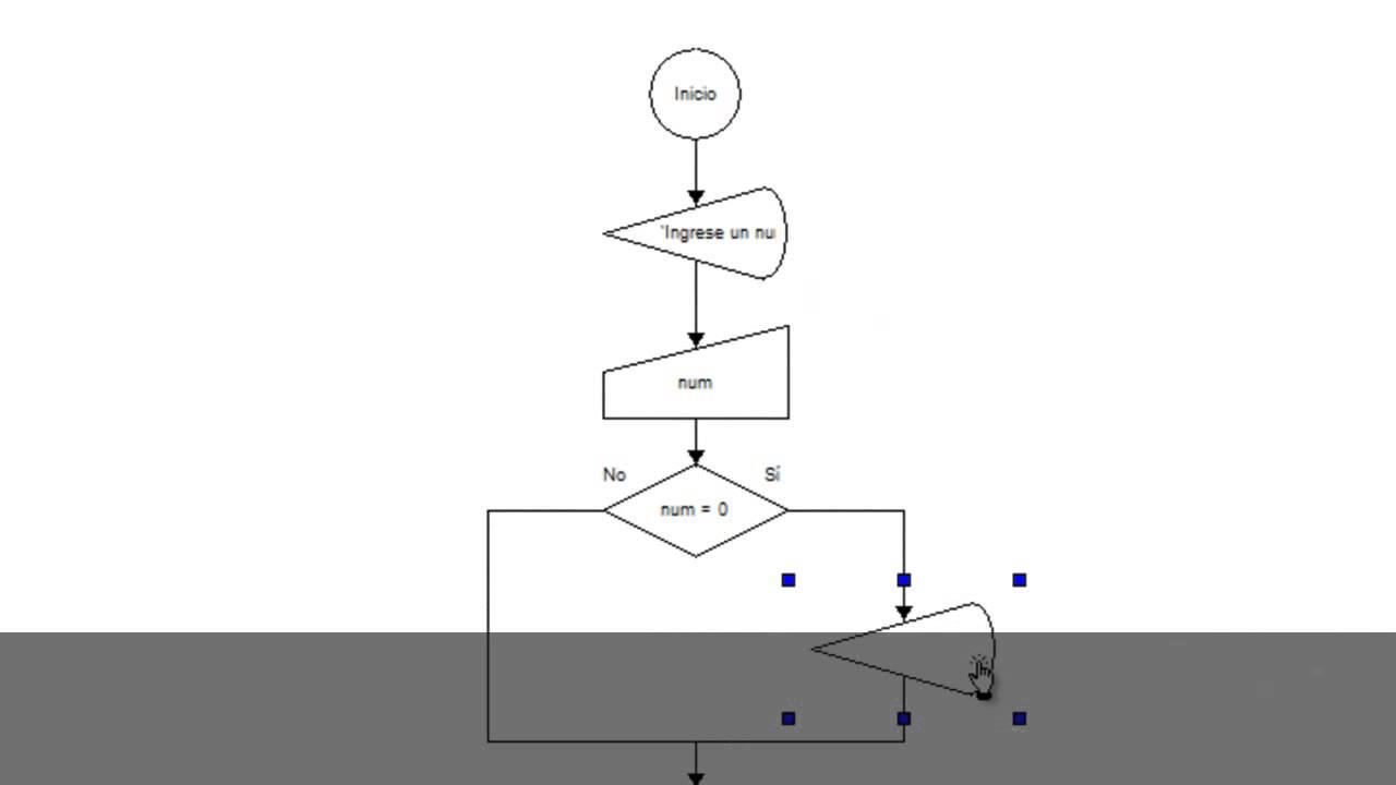 diagrama flujo numero positivo negativo nulo | Doovi