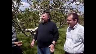 Nucul din Republica Moldova trebuie sa treaca Prutul