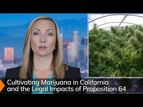 California Marijuana Cultivation Laws (2019) - Prop 64 & HS 11358