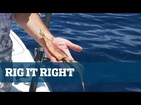 Dolphin Rigging Station - Florida Sport Fishing TV