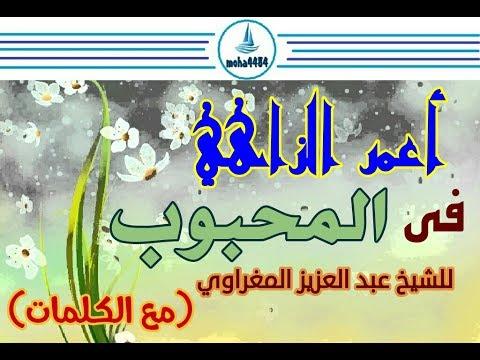 Amar Ezzahi- (اعمر الزاهي- المحبوب (مع الكلمات