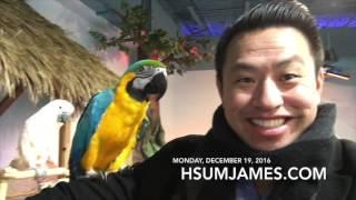 VLOG Monday, 12/19/16 | Seaquest Aquarium - Las Vegas - Seaquest Aquariums
