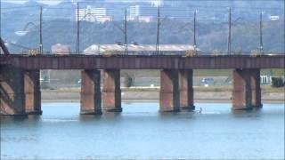紀ノ川(紀の国大橋)の西の景色