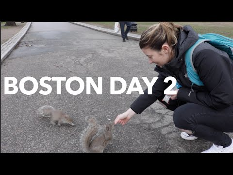 Travel Vlog #2- Boston, USA.