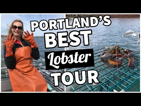 Lobster Tour In Portland, Maine | Lucky Catch Cruises Boat Tour