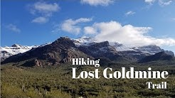 Hiking Lost Goldmine in Gold Canyon, AZ.