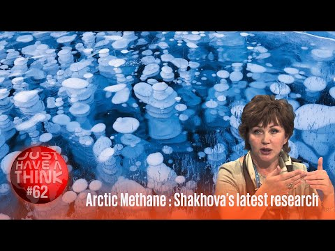 Methane: The Arctic's hidden climate threat : Natalia Shakhova's latest paper.