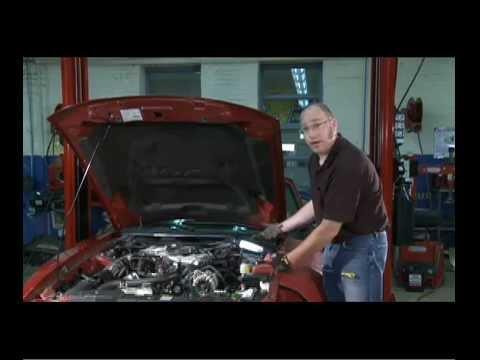 Car Corner: Maintenance Check