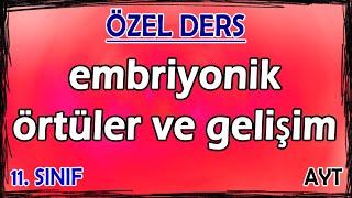 32) Embriyonik Örtüler - Embriyonik Gelişim - Özel Ders (11. Sınıf)