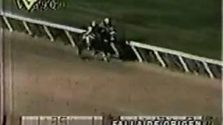 Clasico Jose Rafael Pocaterra 2001