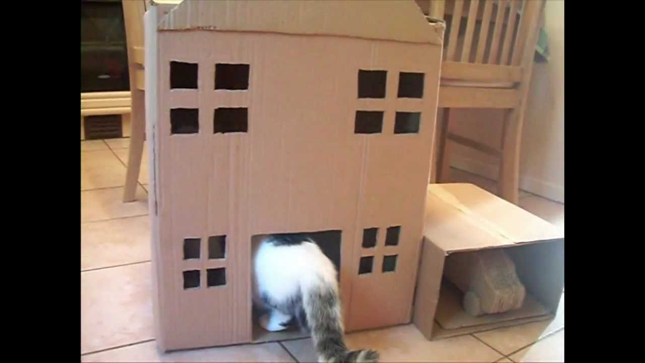 Cardboard House For Cats Homemade Cat Tree Cat House Youtube