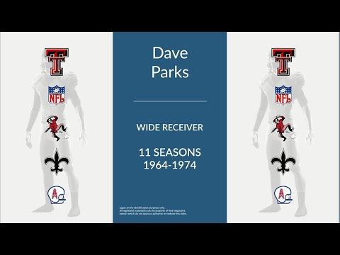 Dave Parks: Football Wide Receiver and End