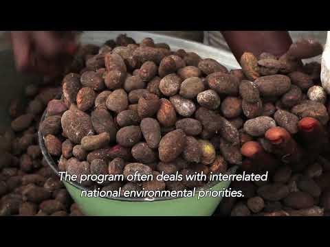 Togo – Alimenter les cuisines en biogaz d'une prison à Lomé grâce au recyclage