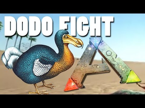 ARK Survival Evolved Gameplay - DODO FIGHT AND TAMING (Live Stream) - Online Part 6 | Pungence