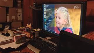 все возможности ТВ приставки - обзор MXQ 4K Pro