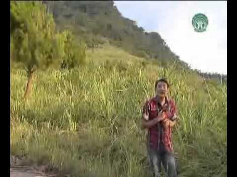 Yêu dân tộc Việt Nam - Chiến Thắng
