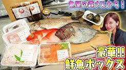 はまゆう 小豆島 の 漁師