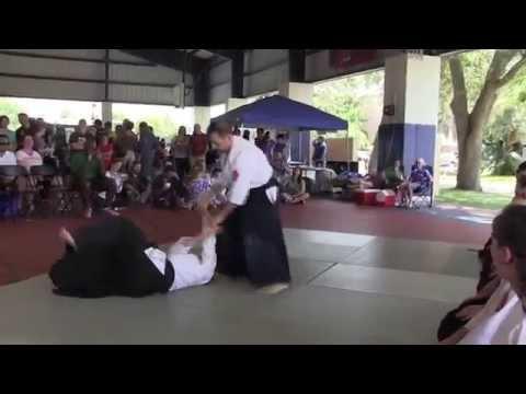 2015 Tampa Natsumatsuri Festival - Aikido Demonstration