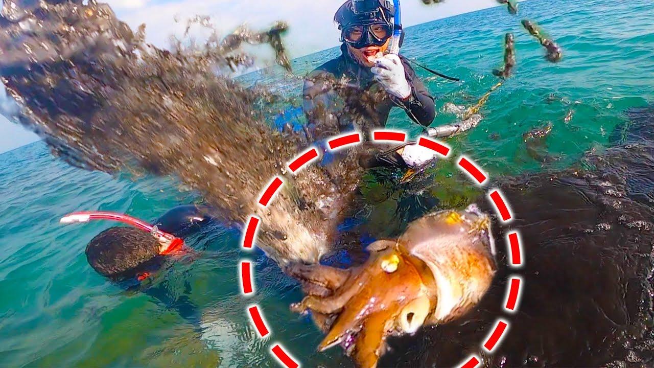 素潜りで巨大イカに挑んだら大変な事態に!【素潜りキャンプ#1】