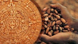 Познавательный фильм про какао и  Как производят шоколад