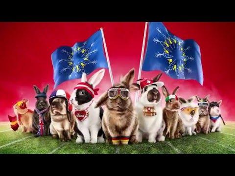 Comeback   La grande EURO course de lapins   Media Markt Suisse   Française
