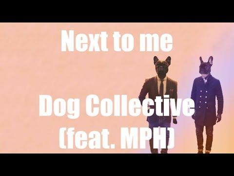 Next to Me - Dog Collective (feat. MPH) | LYRICS