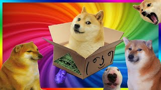 Doge Unboxing (such boxception, very unboxing)