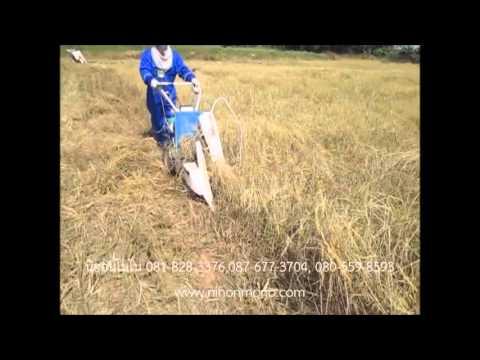 เยี่ยมลูกค้า อ.บัวลาย จ.นครราชสีมา รถเกี่ยวข้าว พร้อมมัด ISEKI RL30 นิฮอนโมโน [www.nihonmono.com]