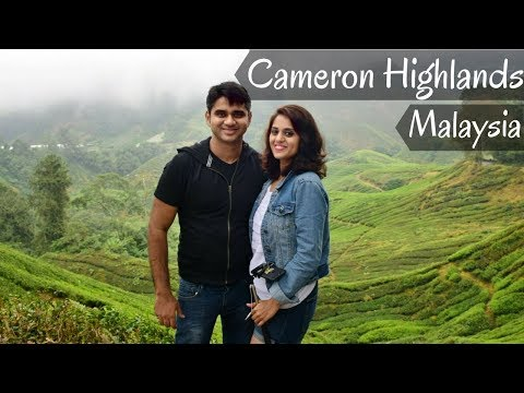 Best attractions in Cameron Highlands, Malaysia | Cameron Highlands Travel Vlog 2018