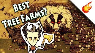 TOP 6 WAYS TO FARM TREES FOR WOOD - Don't Starve Together