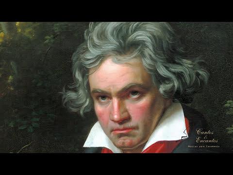 1 hora de la mejor música clásica