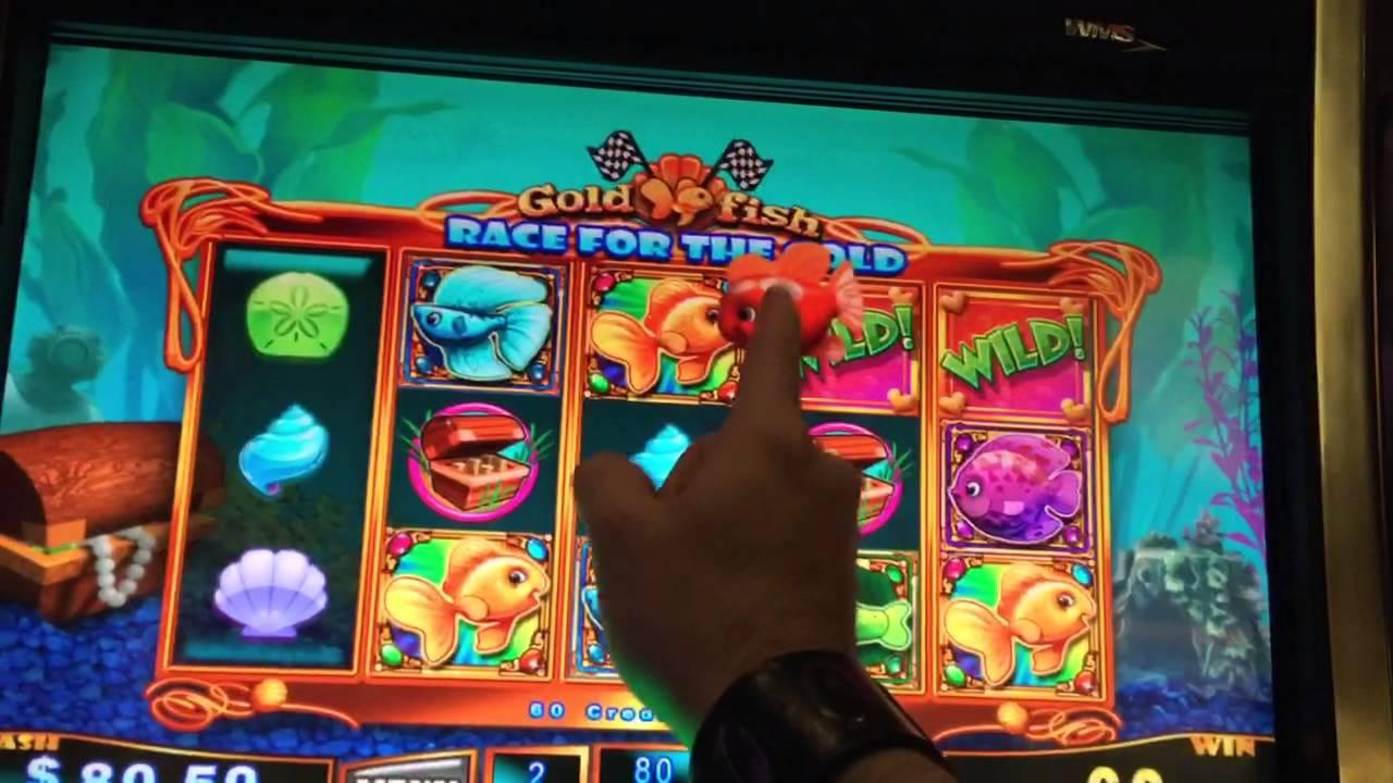 Goldfish race for the gold slot machine bonus red fish for Fish slot machine