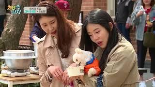 강남, 스탠더드 푸들 '태곤이'의 등장에 이태곤 부르짖은 사연은?!