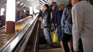 Как мы гуляли в метро. Метро Москвы какая красота