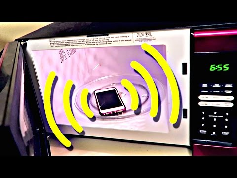can-you-call-a-cell-phone-in-the-microwave?