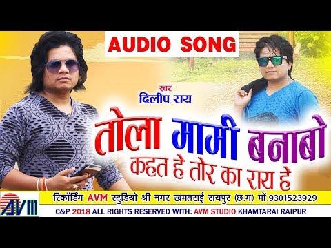 दिलीप राय | Dilip Ray | Cg Song | Tola Mami Banabo Kaht He | Chhattisgarhi Song | 2018 | AVM STUDIO