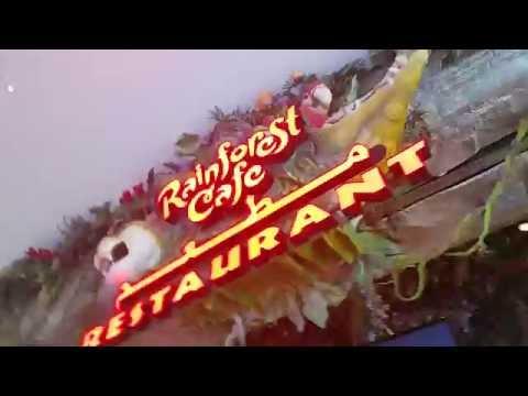 Rainforest Restaurant Staff dancing at Dubai Mall 11.08.2016