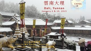 【月光下的凤尾竹】雲南大理 Dali, Yunnan, China