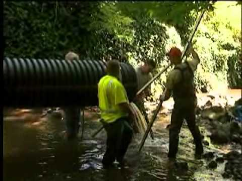 Tryon Creek Culvert Restoration Project
