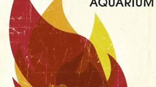 American Aquarium - Casualties (Studio Version)