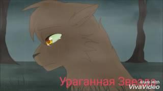 Коты Воители Lost On You клип