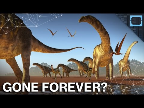 Dinosaurs Are Gone And Never Coming Back