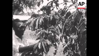 UGANDA BACKGROUNDER - NO SOUND