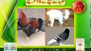 Nazar e Baad say Bachnay kay 19 Tareeqay - Syed Abid Hussain Zaidi