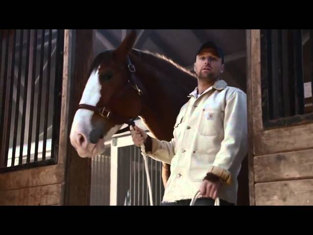 5 great super bowl commercials featuring animals aloadofball Images