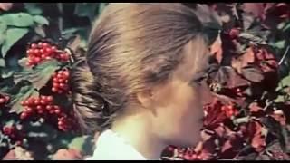 Валентина Толкунова Где ты раньше был нарезка из фильма Приезжая в кадре Жанна Прохоренко и Александ