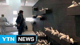 한국 작가들이 꽃피운 네덜란드 예술마을 / YTN